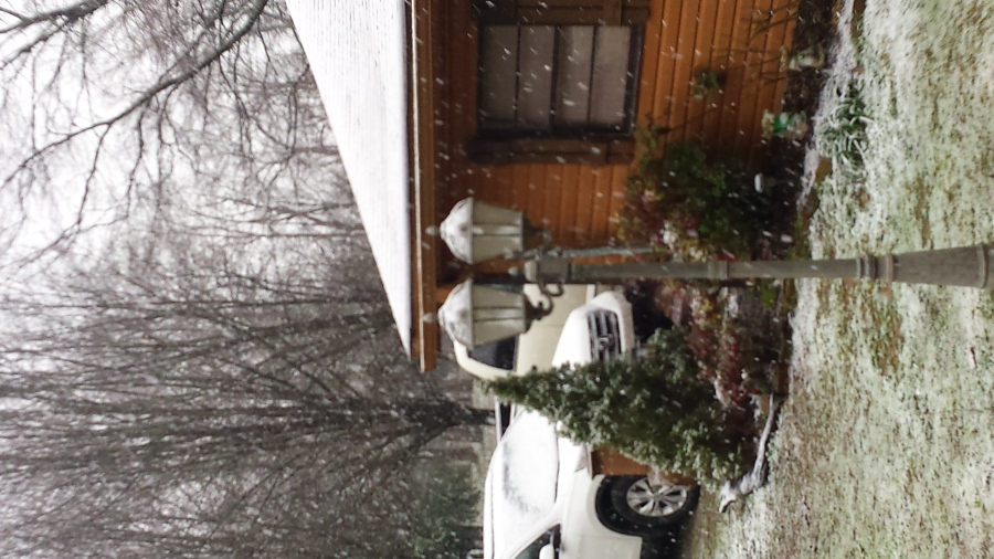 Jackie Stricklin sent this picture from Greenhill