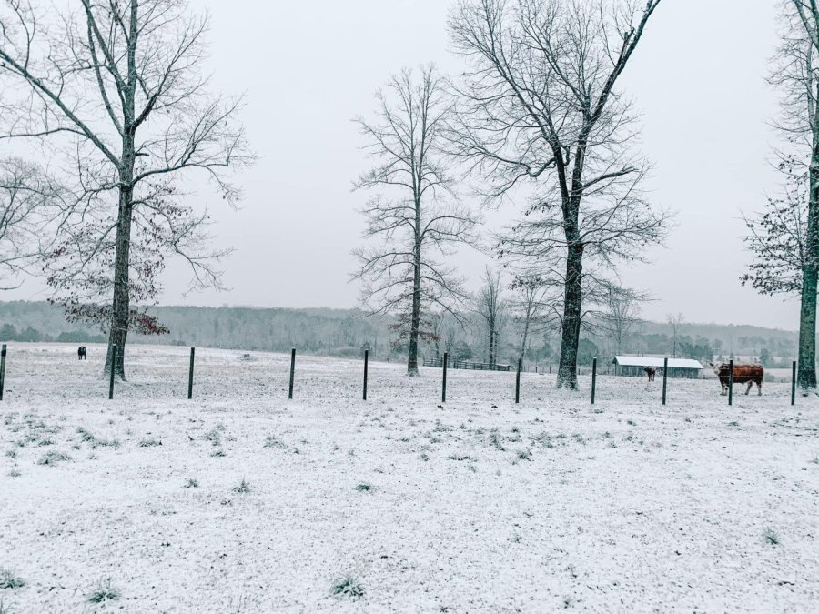 Lindsey Blalock's backyard was covered with snow in Mentone.