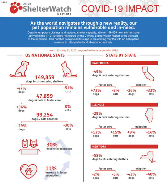 Pet adoptions and foster care trending upwards