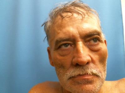 Two Haleyville residents arrested on methamphetamine trafficking charges