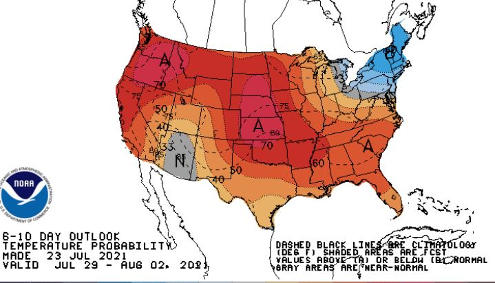 'Ridge of death' heat dome expected to scorch much of the US