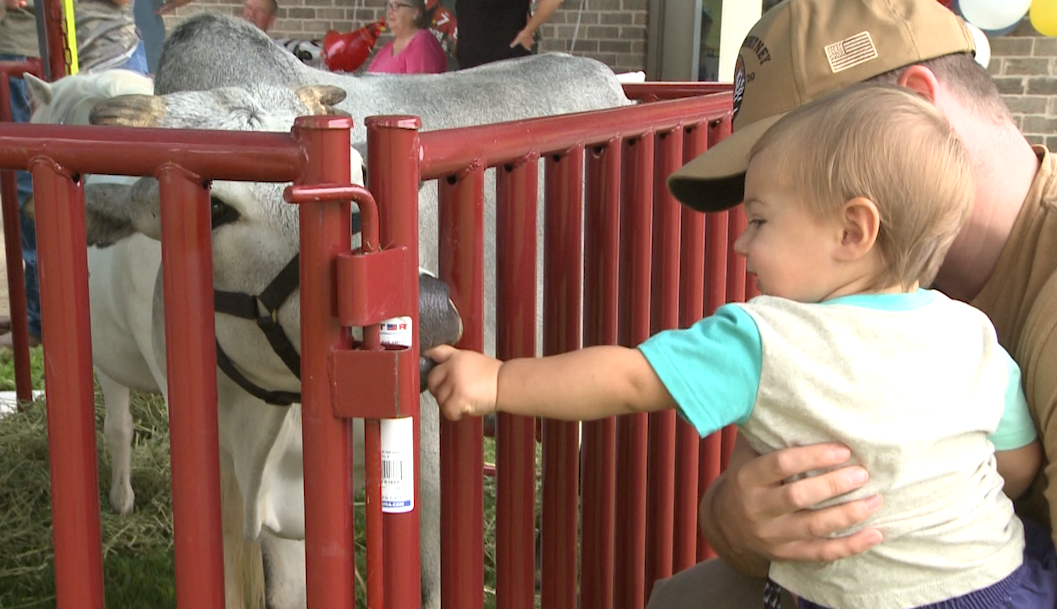Traveling petting zoo of rescued farm animals delights north Alabama families
