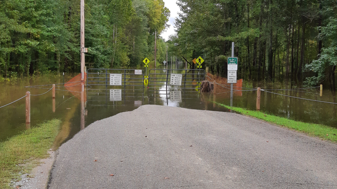 Hays Nature Preserve closes greenways, trails due to flooding