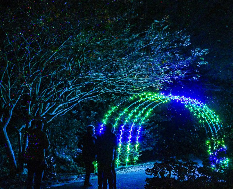 The Huntsville Botanical Garden announced Tuesday the Galaxy of Lights will return with a mix of familiar sights and some new features.